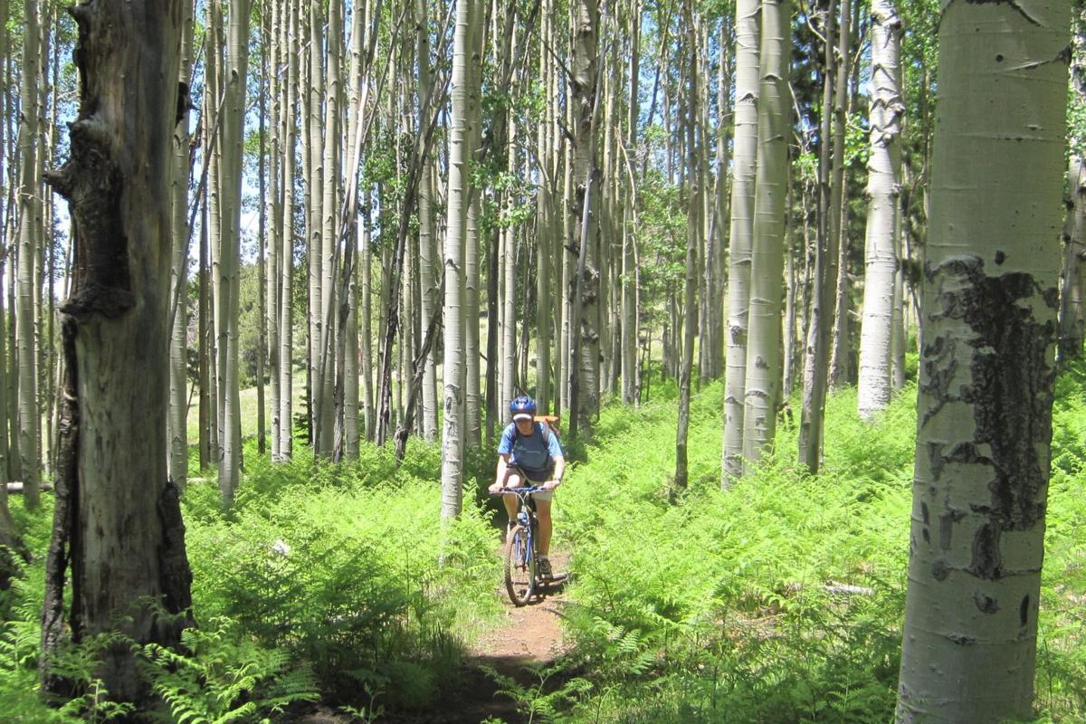arizona trail biking