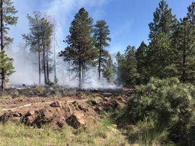 Chimney Springs Fire