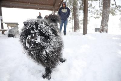 A Facefull of Snow