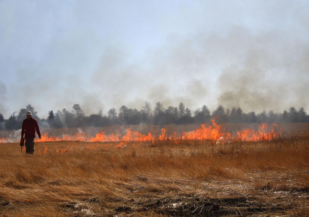 Snaking Line of Fire