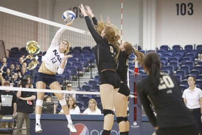 Former NAU volleyball star Vander Ploeg returns to Rolle as assistant for Montana