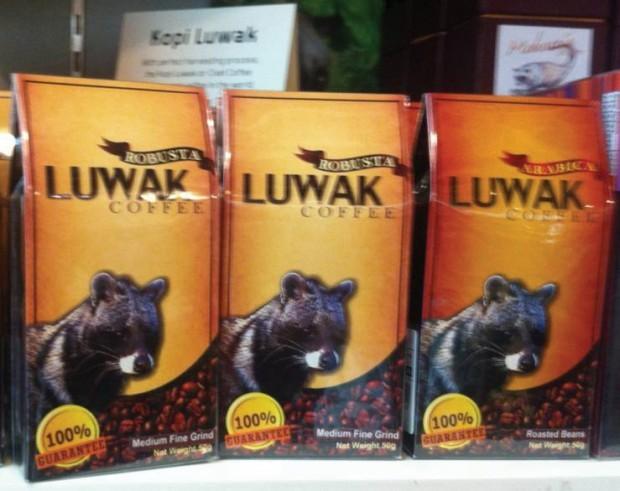 Cat scat coffee