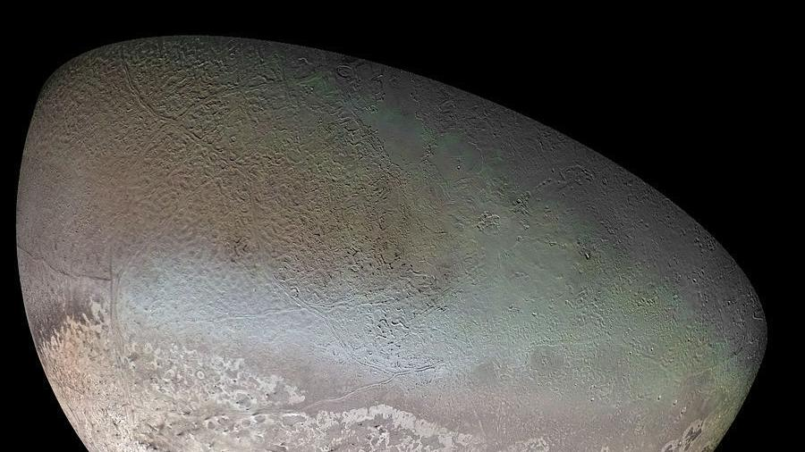 View from Mars Hill: Occultation of Triton drew on Flagstaff astronomers