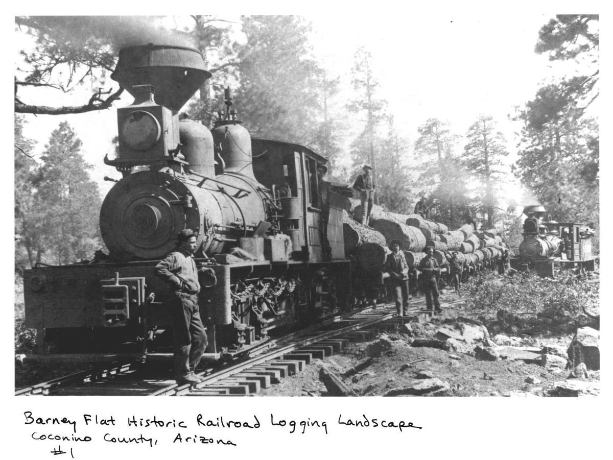 Barney Flat Historic Railroad Logging Landscape