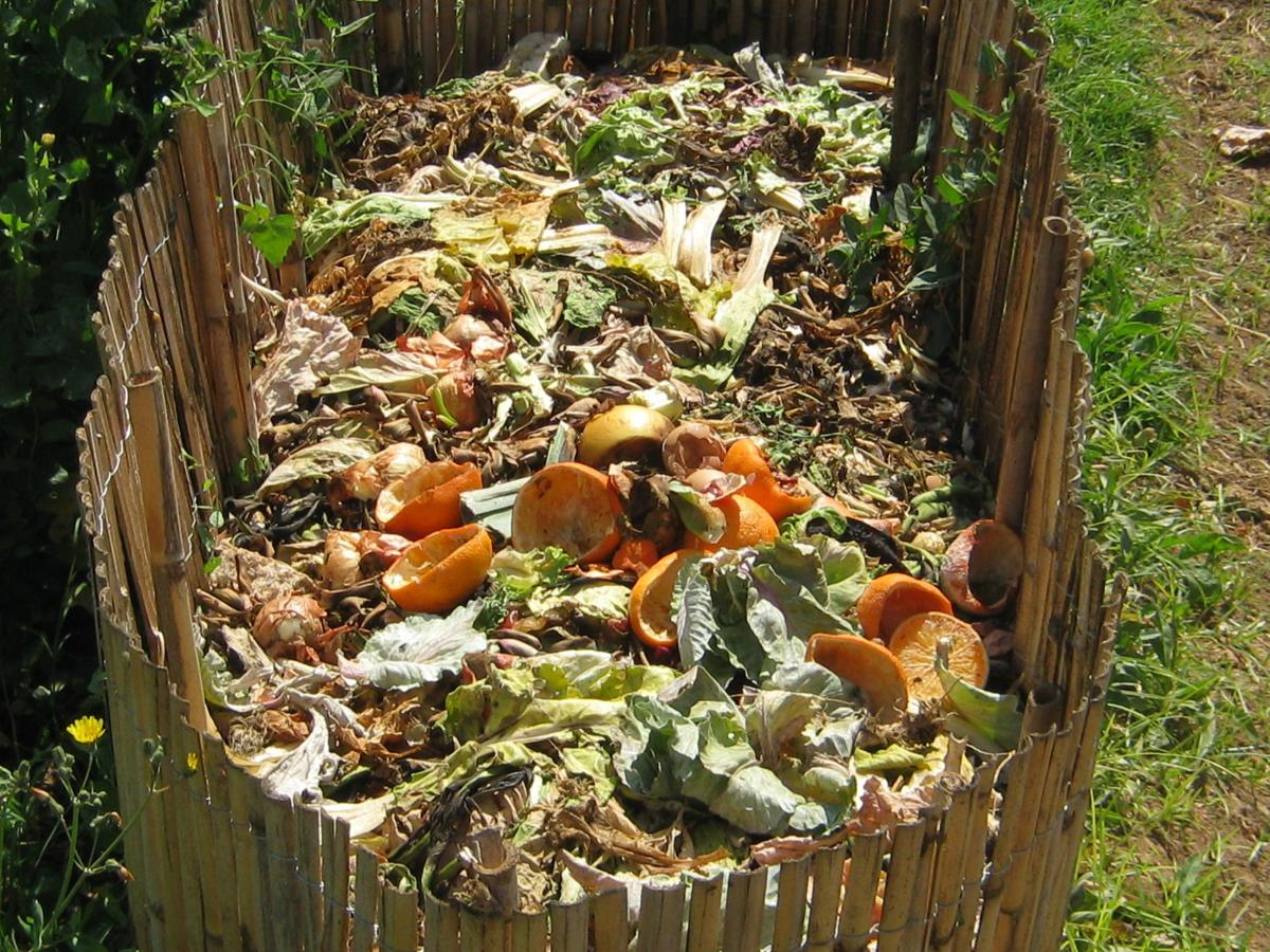 Gardening Etcetera: Composting: what it is and why it works ...
