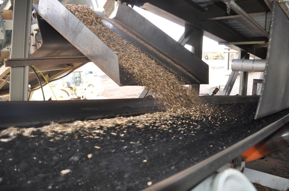 Salt River Project biomass test burn