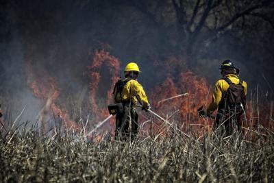 Wildfires 1