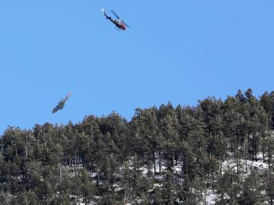 Steep Slope Logging