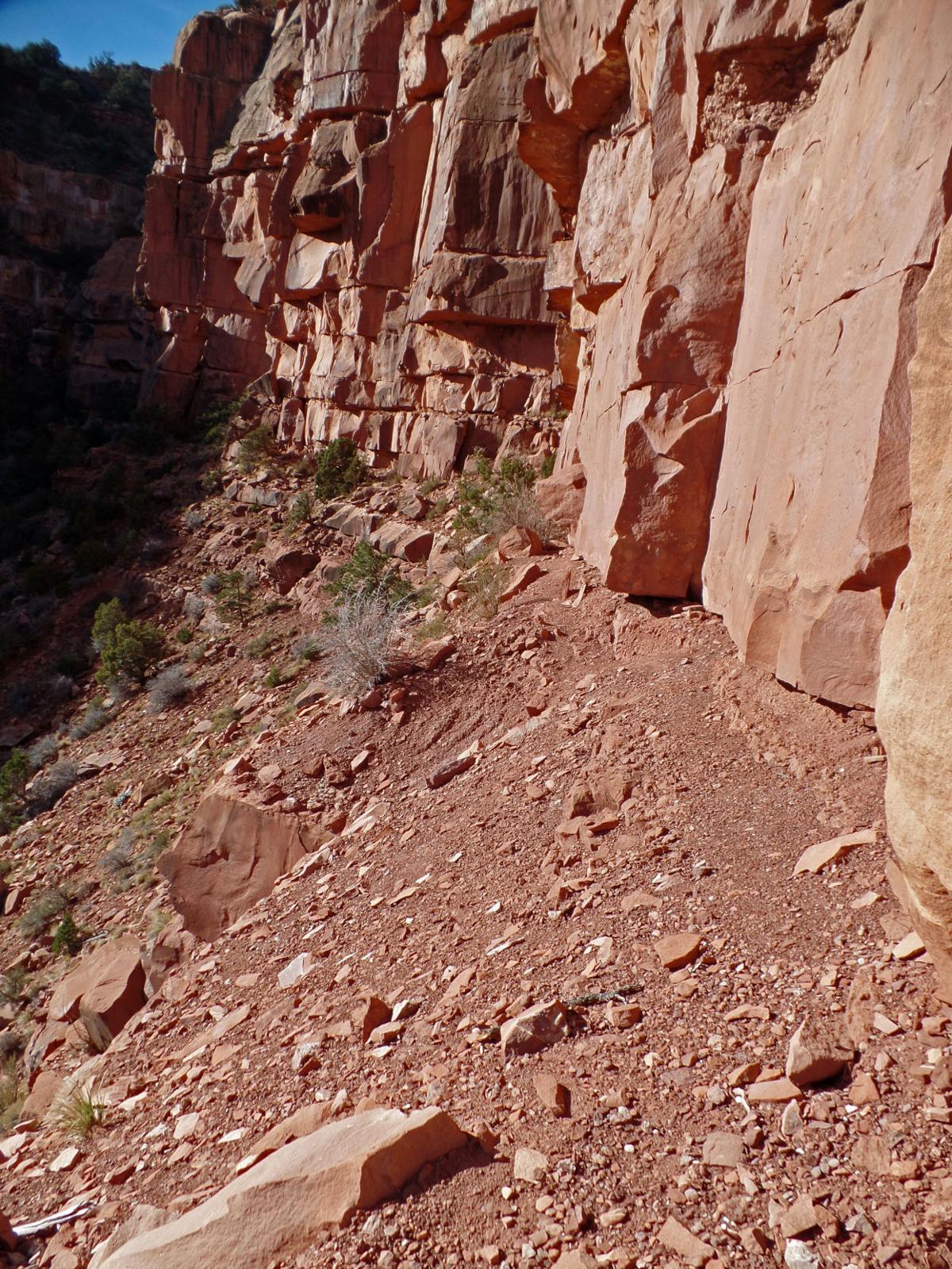 nan164_narrow_trail.jpg