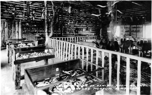Museum Club: a corner of the taxidermy shop 1932