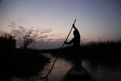 Iraq Marshes (copy)