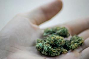 Arizona Supreme Court: Medical marijuana on university campus not subject to arrest