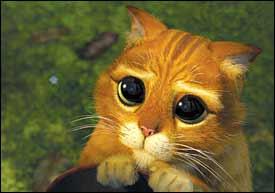 Swashbuckling Cat Wimpy Gingerbread Man Steal Shrek Scenes Azdailysun Com