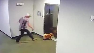 Man saves dog