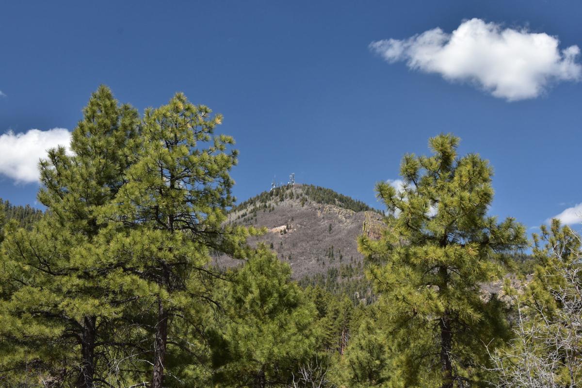 Bill Williams Mountain