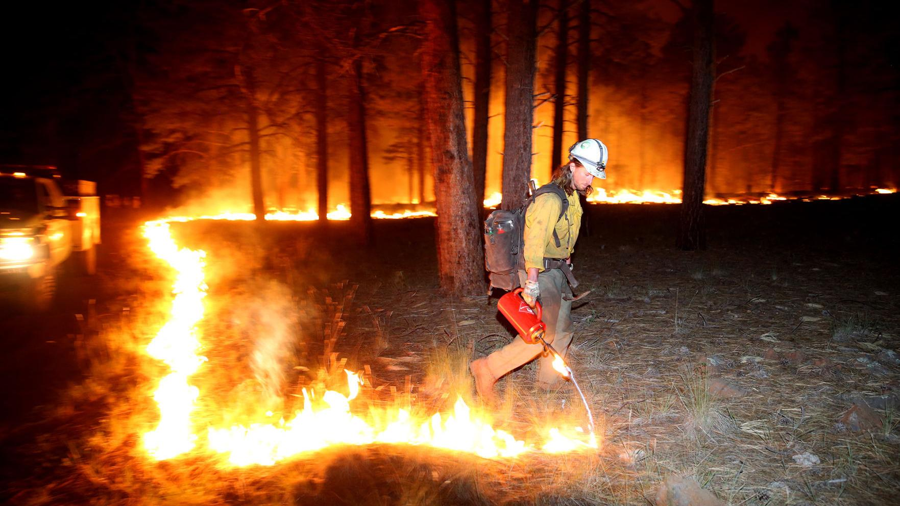 Life behind the wildfire line near Flagstaff