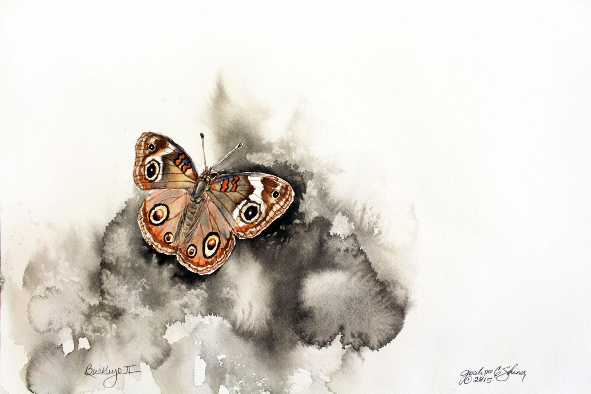 Watercolor and sumi ink painting of a buckeye butterfly by Jocelyne Champagne Shiner.