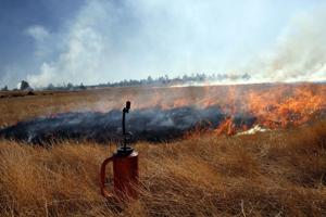Prescribed burn plans scaled back