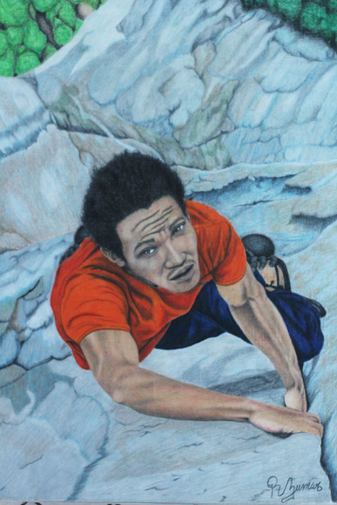 Struggle to Climb.JPG