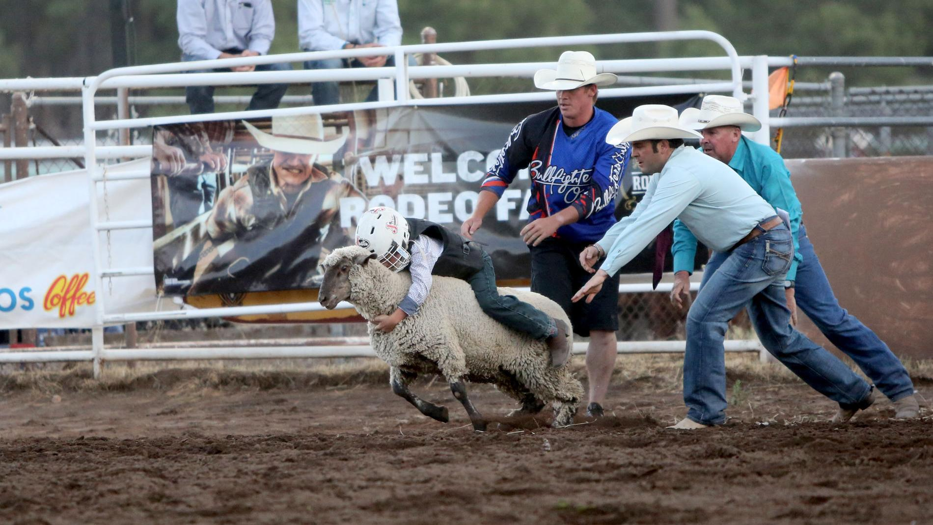Mutton to worry about, say kids at Flagstaff Pro Rodeo