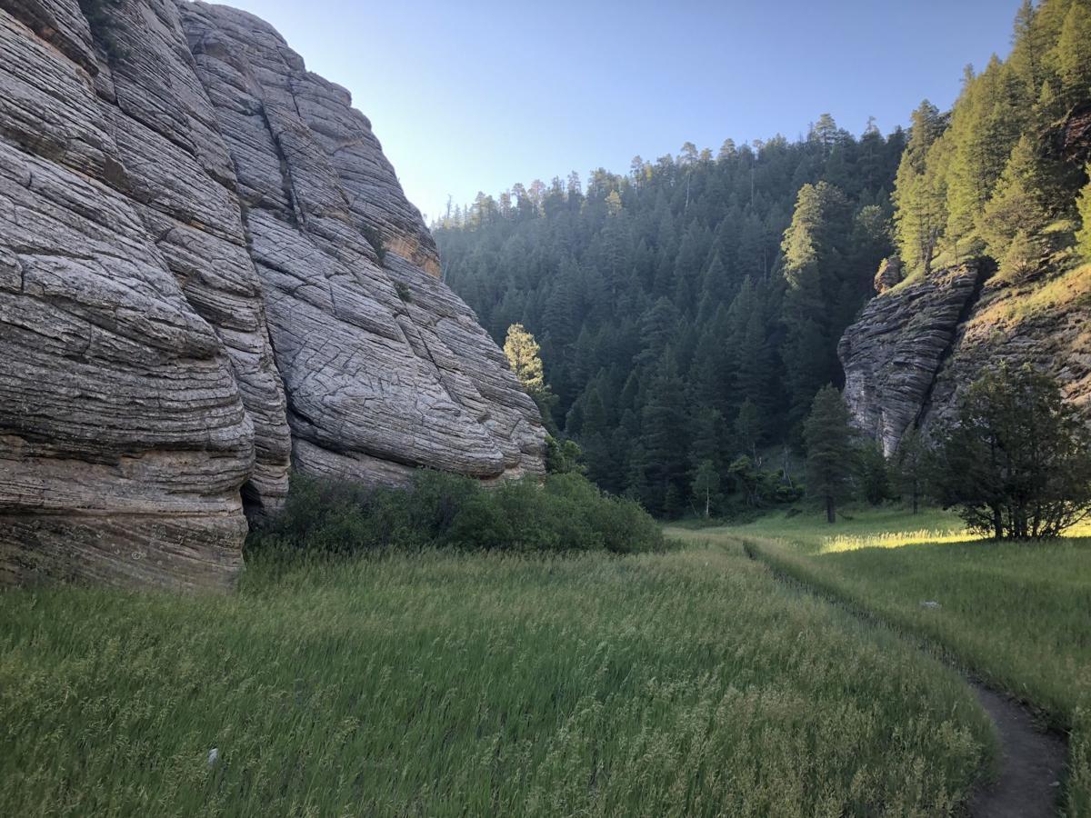 Walnut Canyon photo 1