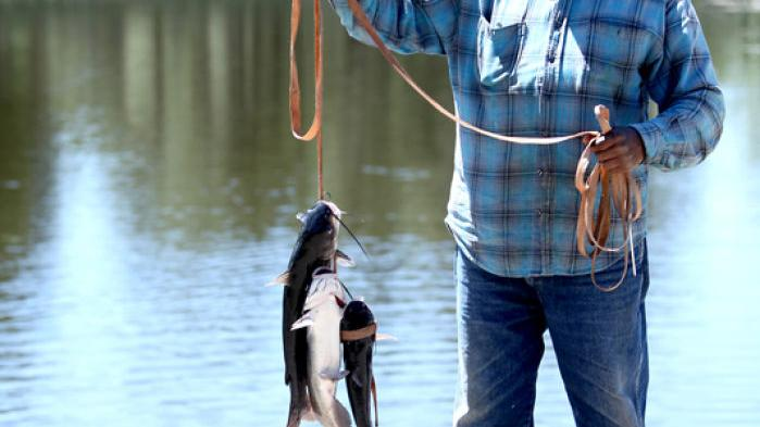 Fishing report: In-city fishin' | Recreation | azdailysun com