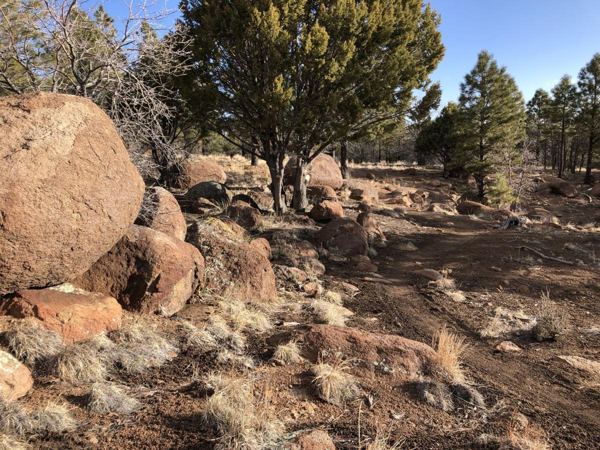 Little Elden Trail rocks