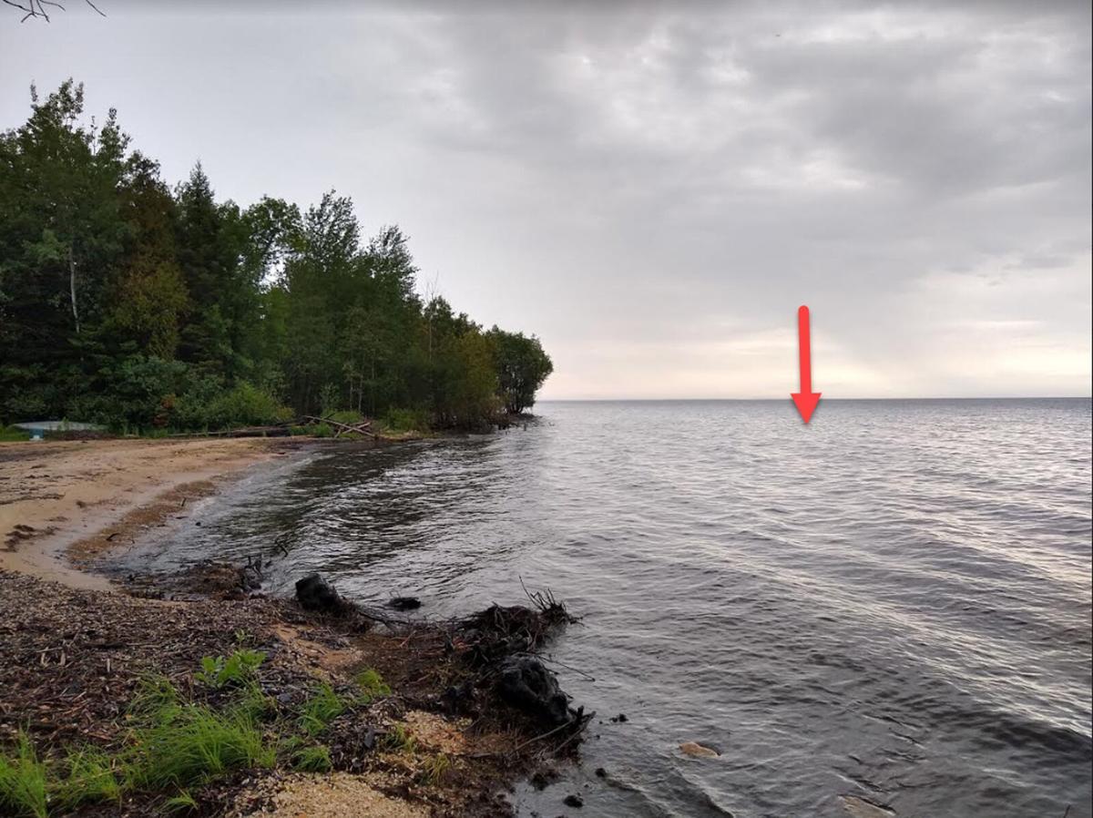 Bald eagle shows air superiority, sends government drone into Lake Michigan