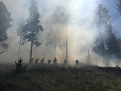 Freidlein Fire photo