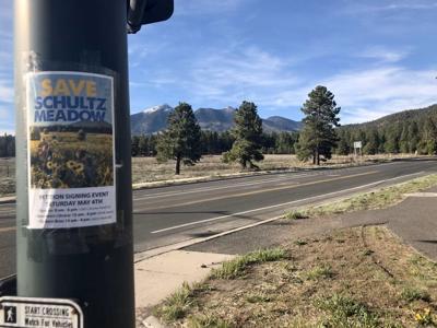 Save Schultz Meadow flyer