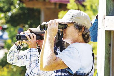 Area waits until Jan. 5 to see if it  retains its first place birding placement