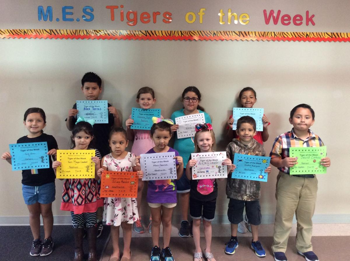 Tigers of the Week – Neatness