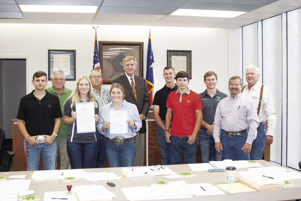 Court honors 4-H work through proclamation