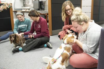 Pet Talk: The Magic of Pet Therapy