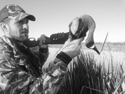 Absence of hard winter hurts waterfowlers, helps salty anglers