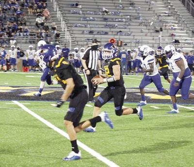 Cats open new stadium in style with win