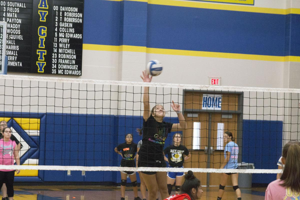 Ladycats' coach feels good as volleyball camp opens