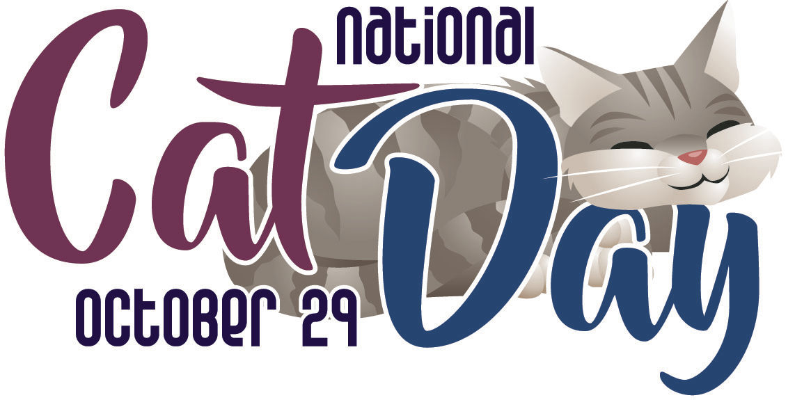 Texas A M Expert Celebrate National Cat Day With Some Real Cat Titude Community Baycitytribune Com