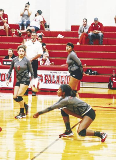 Area volleyball squads prep for playoff runs