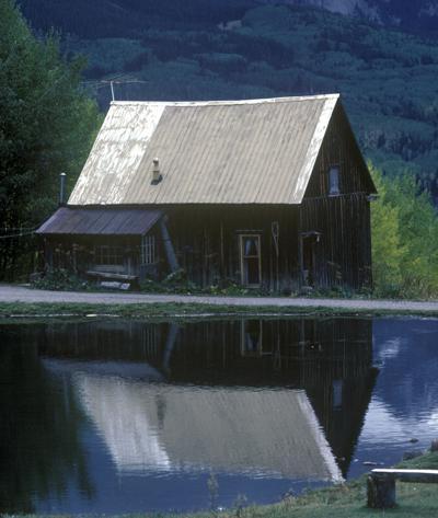 Woods, Water & Wildlife: Cabin fever