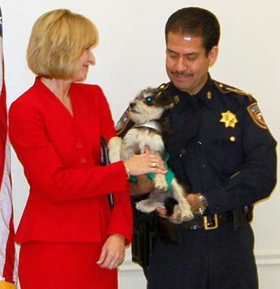 Law efforts reduce dog abuse in Crosby