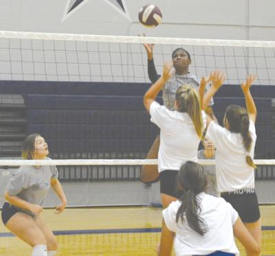 Sterling volleyball expects to take big step