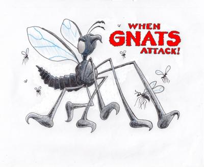 When gnats attack