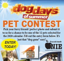 Dog Days Of Summer 2020.Bluefield Daily Telegraph S Dog Days Of Summer Bdtonline Com