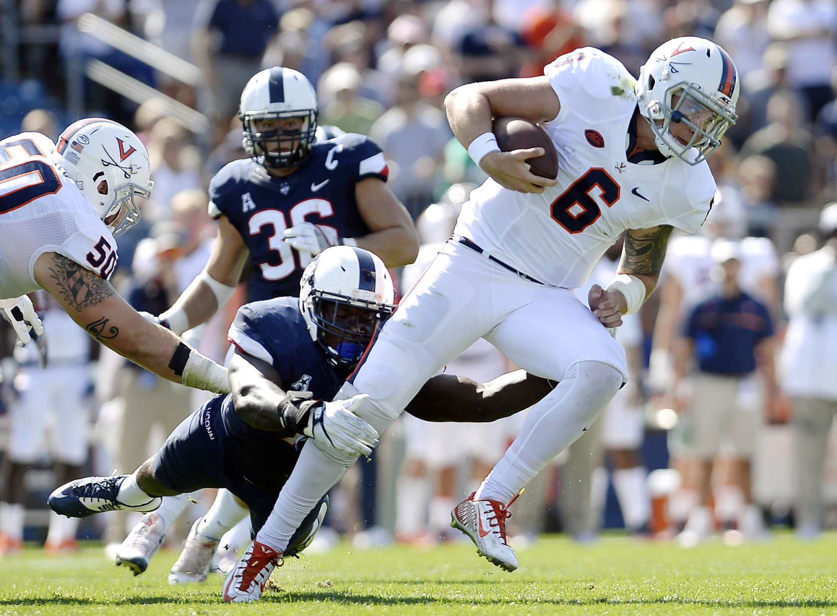 Wahoos a double-digit favorite against UConn
