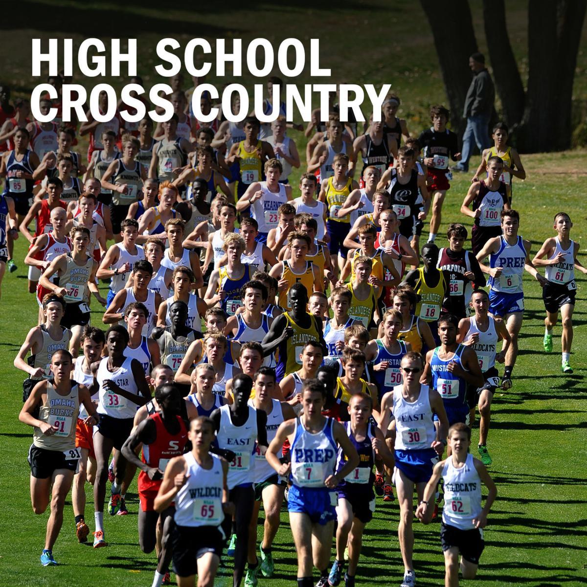 High school cross country logo 2014