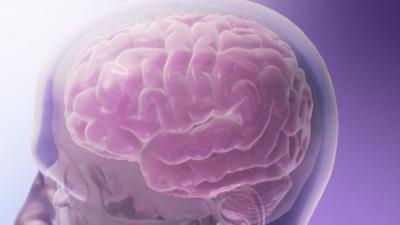 Brain animation