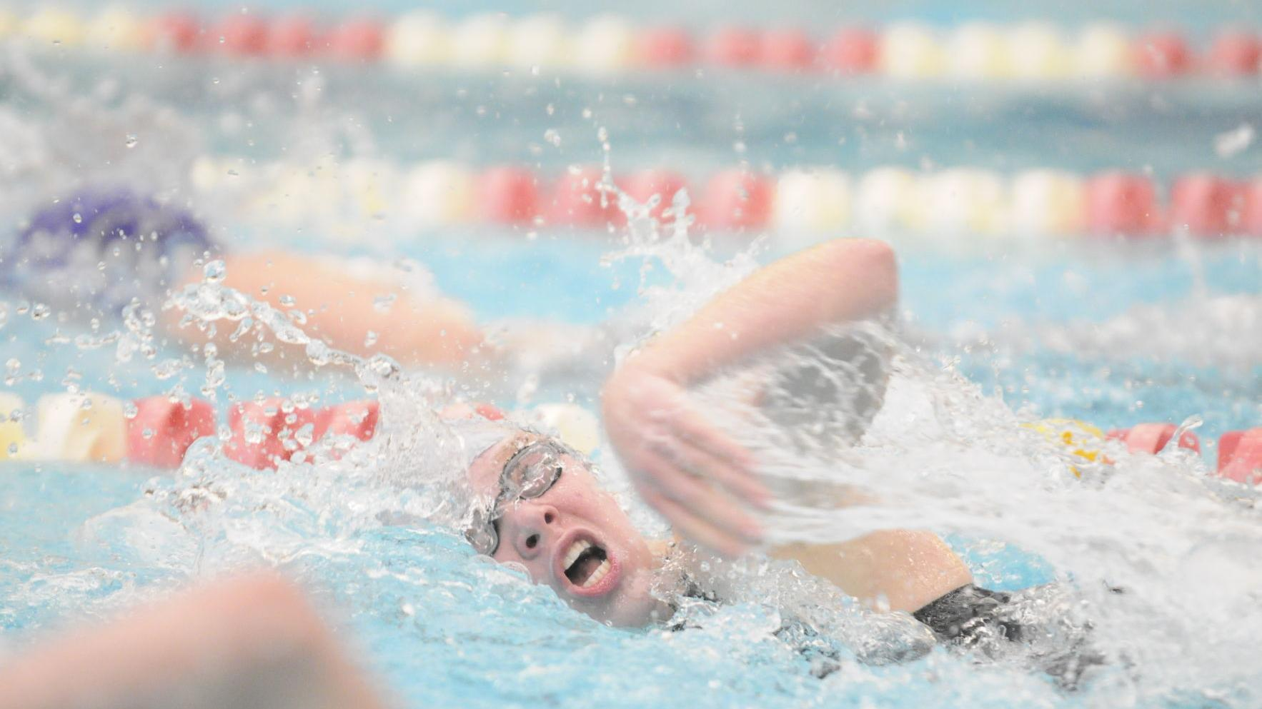 BNF swimmers compete at state meet