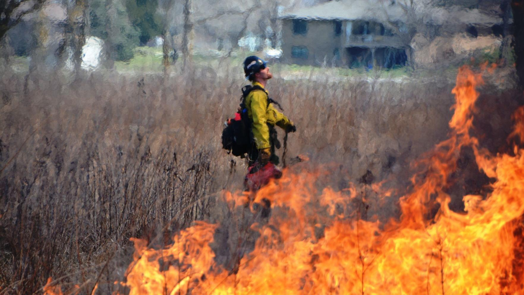 Little fire on the prairie: Homestead burns old growth to make way for new