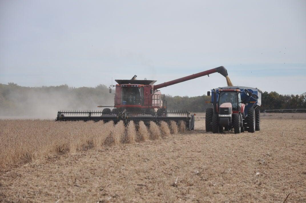farming 1